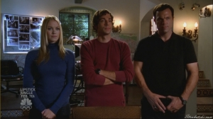 Team Bartowski from Undercover Lover